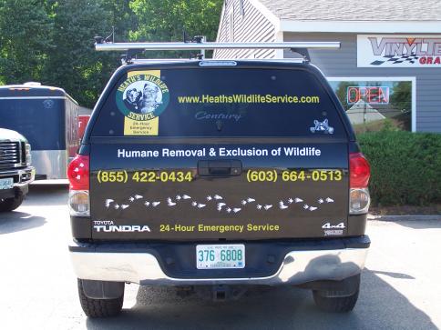 Vehicle Lettering Vinyl Tech Graphics